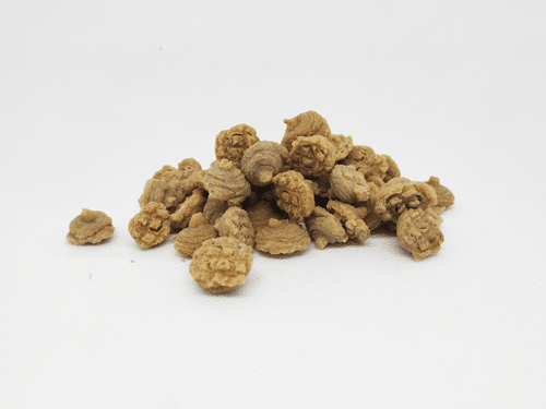 snack per cani con insetto
