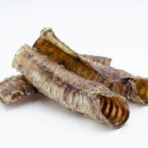 trachea di bovino per cani